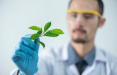 Courses related to Biological Sciences are very common in pre-med