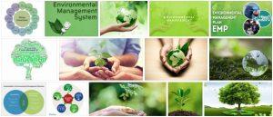 Study Environmental Management