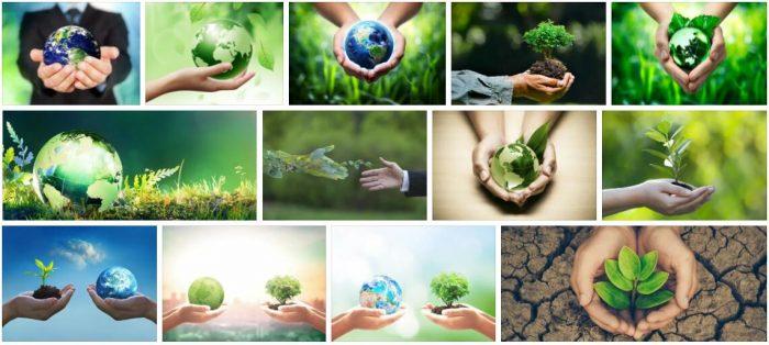 Study Environmental Protection