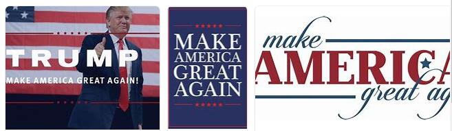Make America Small Again 13