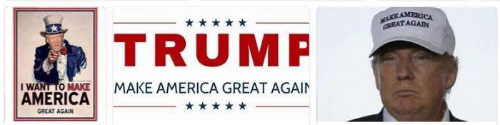 Make America Small Again 14