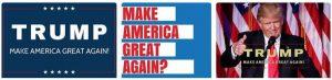 Make America Small Again 15
