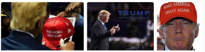Make America Small Again 2