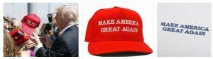 Make America Small Again 4